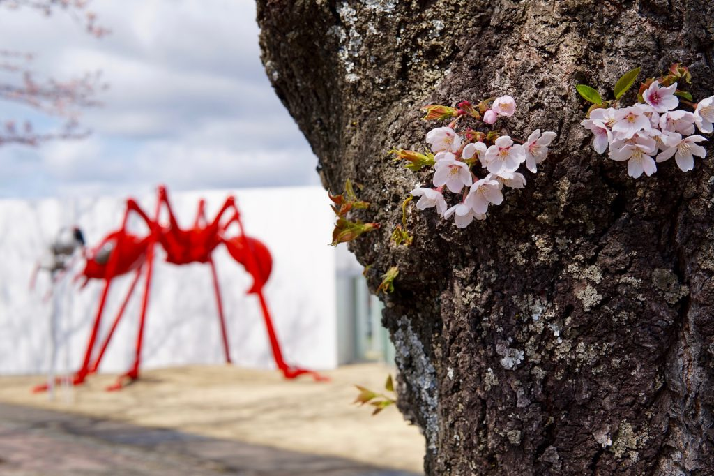 赤いアリのオブジェ