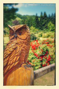 ふくろうの木彫り